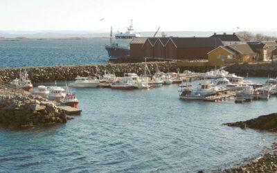 Frojos saloje daug mažų laivų prieplaukų. Čia gyvenantys lietuviai laisvalaikiu mėgsta žvejoti.