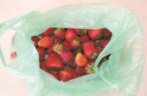 Statistika skelbia, kad vienas lietuvis per metus vidutiniškai sunaudoja 466 vienkartinius plastikinius maišelius. ES vidurkis vienam žmogui – 200 vnt. Toks, atrodytų, nekaltas plastiko vartojimas, smarkiai prisideda prie klimato kaitos pokyčių.