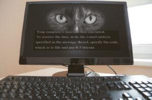 Prieš dvejus trejus metus ne vienoje mūsų krašto įmonėje, ryte įjungus kompiuterius, ekranuose pasirodė toks vaizdas ir reikalavimas sumokėti išpirką už duomenų atkodavimą.