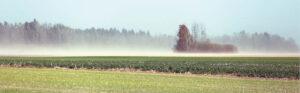 Vėjo erozija dėl intensyvios žemdirbystės paplitusi labiausiai. Ūkininkai šiemet šį reiškinį dėl vyravusios sausros galėjo matyti itin dažnai.