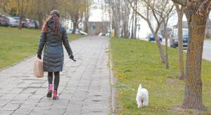 Erkės yra ne tik žmonių, bet ir gyvūnų bei paukščių parazitai.