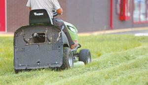 Erkės mėgsta pavėsį ir drėgmę – žema veja gali sumažinti joms tinkamų buveinių plotus.