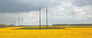 Be elektros gyventojai neliks – tuo ir toliau rūpinsis Elektros skirstymo operatorius. Ričardo PASILIAUSKO nuotraukos