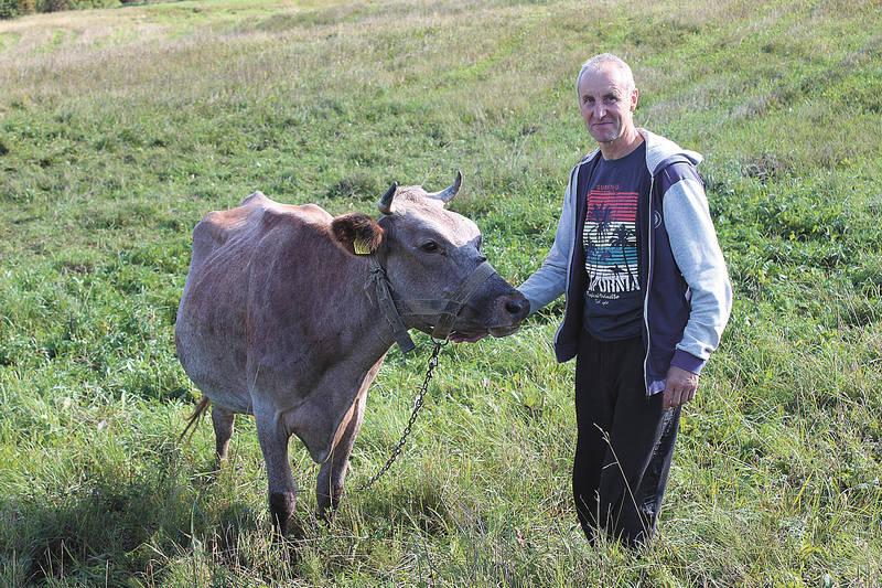 Parama smulkiems pieno ūkiams atveria naujas galimybes