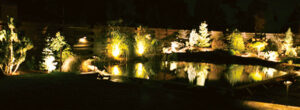Šviesomis sukurtas įspūdingas Gintauto Kavaliausko baseino vaizdas. Karolio Dvylio albumo nuotrauka