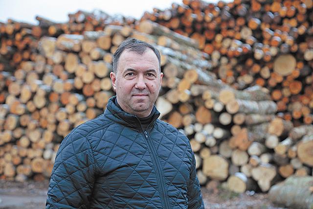 """UAB """"Gikra"""" vadovo Aido Gžibovskio fone – taros rąsteliai, iš kurių įmonė gamina padėklų ruošinius."""