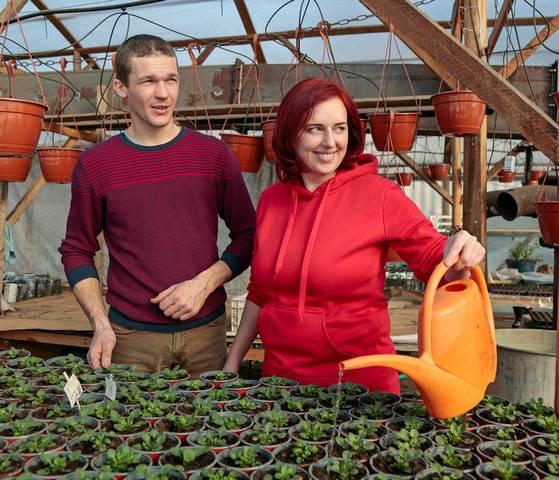 Remigijus ir Vaida Skuoliai prekybą našlaitėmis planuoja pradėti balandžio pabaigoje. Nors asortimente – įvairių spalvų našlaičių žiedai, sutuoktiniai prognozuoja, jog populiariausios bus geltonos spalvos gėlės.