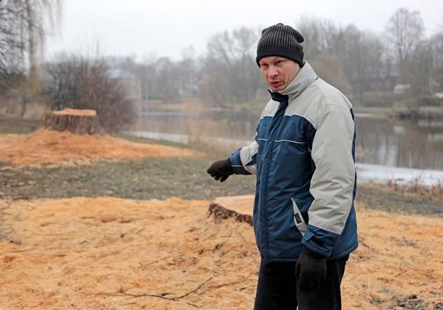 """""""Galima nereaguoti į tuos nukirstus brandžius medžius, bet... mums, kaip piliečiams, skauda"""", – sako Valdas Kulvinskas."""