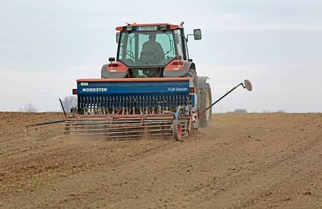 Ūkininkai R. Juknelis ir A. Grigaliauskas kartu dirba apie 80 ha, 60 ha priklauso Ričardui, 20 ha – Andriui.
