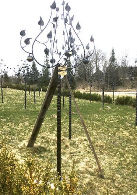 Vilkaviškio žydų atminties obelis Žemaitijoje