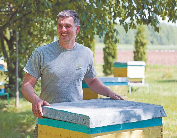 Girmantas Gumauskas šiuo metu yra atsakingas už 35 Padovinio ŽŪB bičių avilius. Darbo to jis nevadina – vien malonumu.