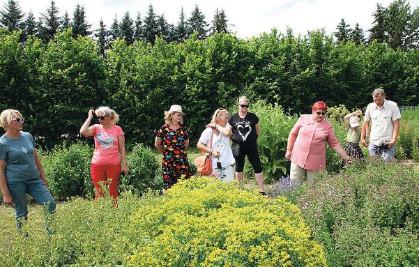 mokslininkai. Retųjų ir vaistinių aromatinių augalų kolekcija pristatė LAMMC j. mokslo darbuotoja Nijolė Maročkienė (šešta iš kairės).